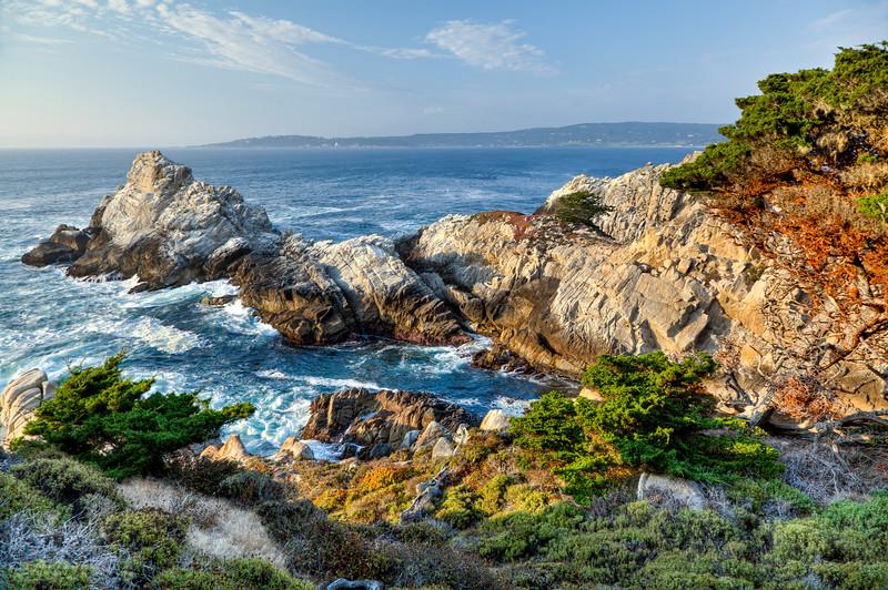 Point Lobos Beauty