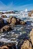 Pacific Grove Rocky Shore 8