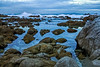 Pacific Grove Rocky Shoreline Afternoon