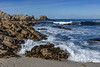 Pacific Grove Rocky Shore 7