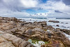 Pacific Grove Rocky Shore 4