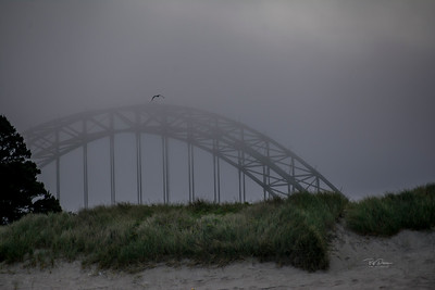 Foggy morning Bridge 7