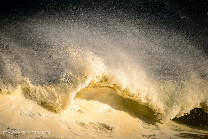 The_Wedge_050415 (127 of 168)