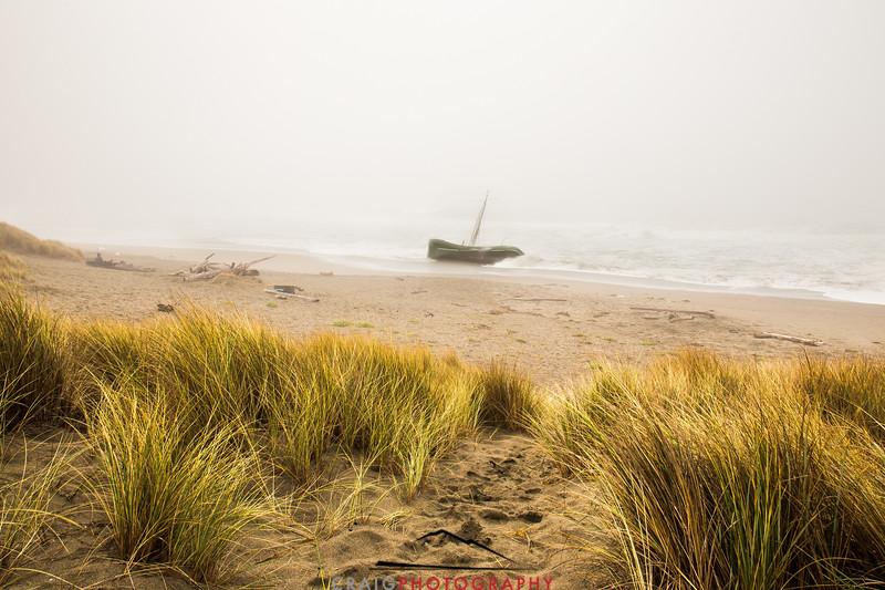 Salmon Creek Shipwreck  #12