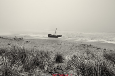 Salmon Creek Shipwreck  #14