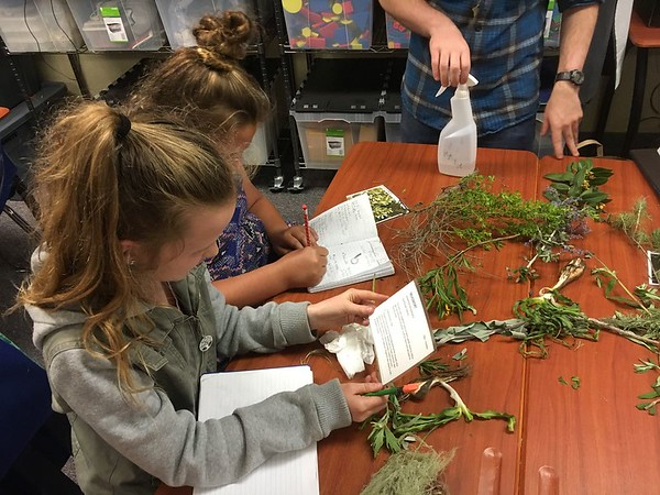 Native Plants and People Training