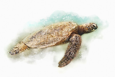 Sea Turtle II - Hawaiian Green Sea Turtle Watercolor Painting