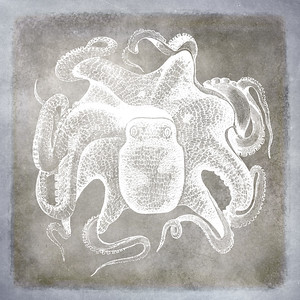 Vintage Octopus Sea Life Pewter and Blue Watercolor
