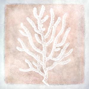 Retro Coral Wash I