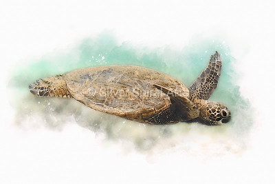 Sea Turtle I - Hawaiian Green Sea Turtle Watercolor Painting