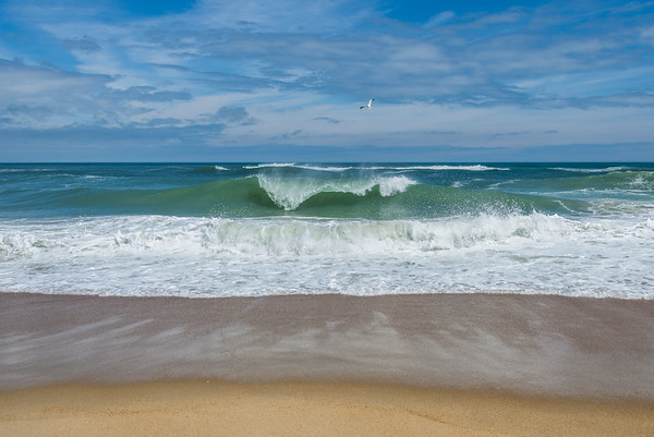 Ocean 4649