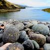 Pebbles at Pt. Lobos