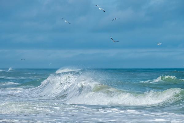 Ocean 4624