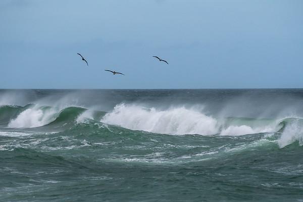 Waves 827