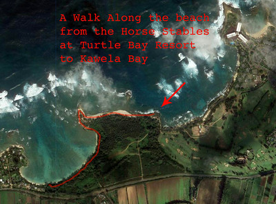 Google Satellite View of Turtle Bay and Kawela Bay  North Shore Oahu, Hawaii