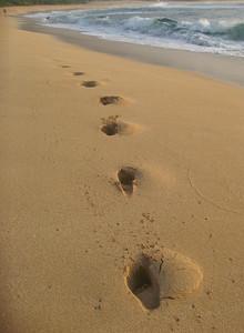 Sunset BeachDeep surfer footprints North Shore, O'ahu, Hawai'i