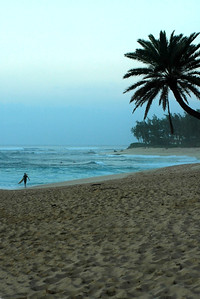 Surfer walking on the beach at dawn  North Shore, O'ahu, Hawai'i