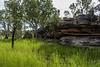 Arnhemland landscape
