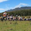 4 january 2015 - Oceania Relay Championships - Diddleum Plains - The Mass Start