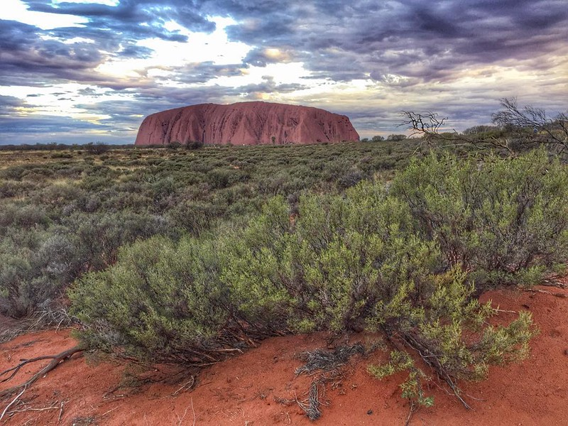 "Uluru at sunset. A sacred place for the Anangu, an Aboriginal people who have lived from and taken care of this land for an estimated 30,000  years. From afar, Uluru appears just a flat rock outcropping; up close, you see something different, details. Pair that with ancient creation stories, and you get a sense of texture very different from what most of us are accustomed. These stories are part of the ""tjukurpa,"" the traditional Aboriginal law that teaches how one should relate to the environment and to other people. The oral hi/stories also serve as a sort of survival manual for finding water, hunting animals, avoiding poisonous plants, etc. While Uluru is beautiful in it's own right, it's the backstory of the Anangu people's relationship to it that makes visiting here a remarkable -- if not transformative -- experience. via Instagram http://ift.tt/1nQhdvZ"