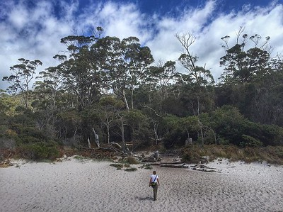 Nature puts us in our place. The beach at Wineglass Bay, east coast Tasmania. #Australia via Instagram http://ift.tt/1OBEhE5