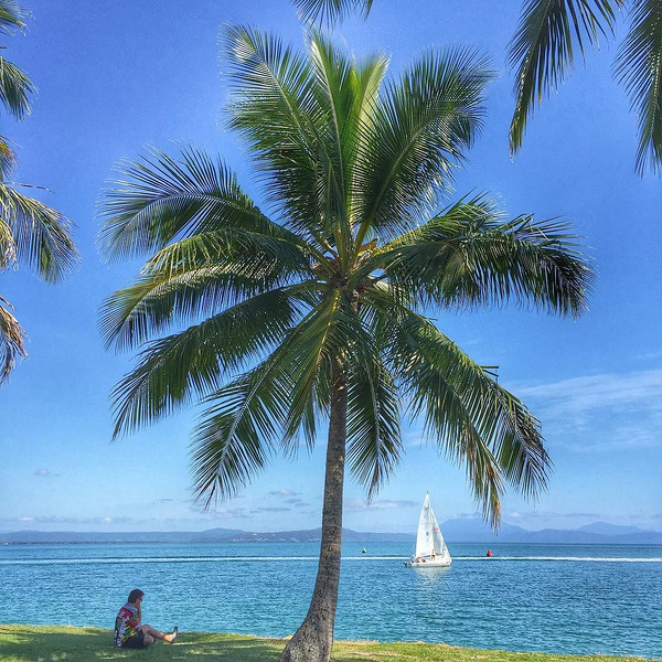 Palm Tree Point, Port Douglas. I'm a big fan of the well-timed appearance of a sailboat. If you grab just the right shady spot of choice at Rex Smeal Park, you get to watch them here off the Queensland coast all day long. Australia #lazysunday via Instagram http://ift.tt/1Jw0Hv9