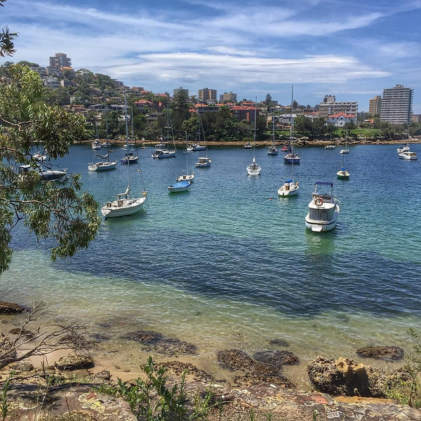 One of the looks along the Manly to Spit Bridge Scenic Walkway in Sydney. A 10km track that takes roughly 3 hours, it's a little bit of the bush just outside the city center. A great day trip for us included the Manly Ferry and a walk from the bay to Manly Beach, Cabbage Tree Bay, the walkway, then a bus back through town over the Harbor Bridge. Sydney and its many faces. via Instagram http://ift.tt/1Qj1QW9