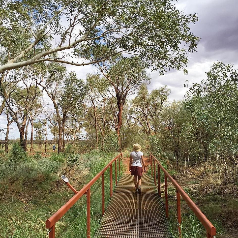 Kuniya Walk at Uluru National Park - Northern Territory, Australia