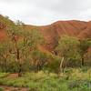 Kuniya Walk at Uluru - Northern Territory, Australia
