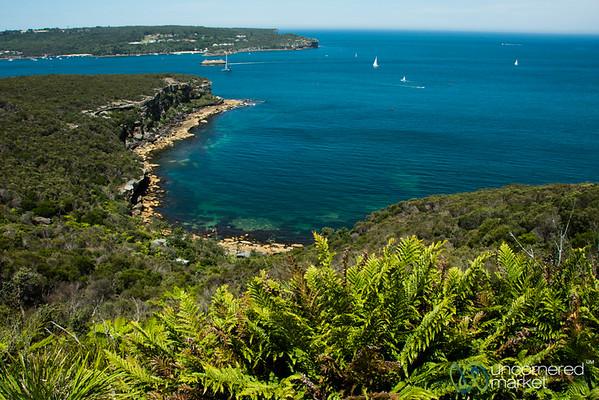 Manly to Spit Bridge Walk - Sydney, Australia