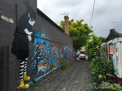 Street Art Alleys in Melbourne's Neighborhoods