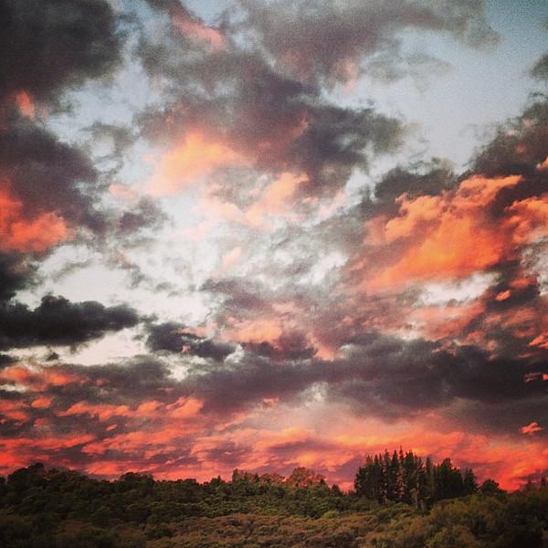 Kaituna River sunset, post whitewater rafting. Pink sky at night... #newzealand