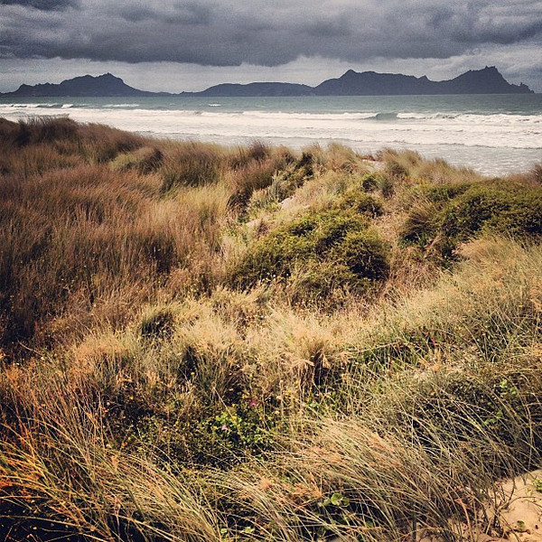 Dunes and volcanic islands, Uretiti Beach. #newzealand #dna2nz #gadv