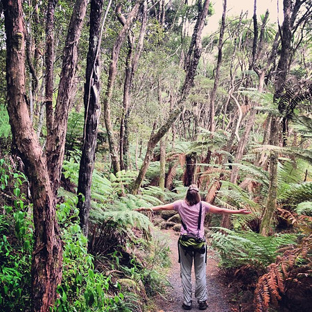 """Get amongst it!"" - Audrey grabs a bit of junglelicious New Zealand rainforest"