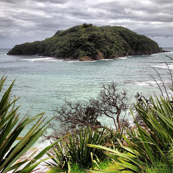 A view from Goat Island. This is Northland, #newzealand #dna2nz #gadv