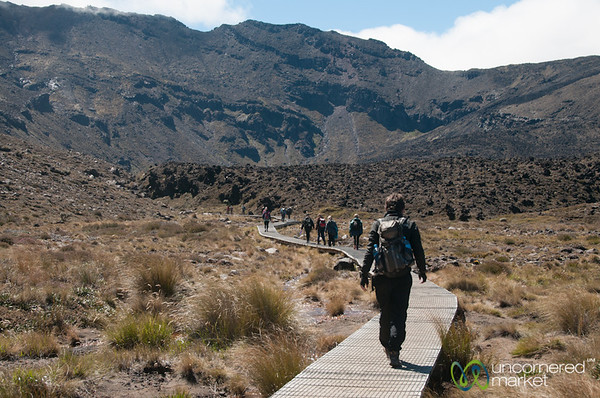 Hiking Up to Tongariro Crossing - New Zealand
