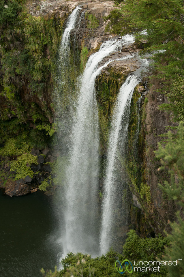 Whangarei Falls - Northland, New Zealand