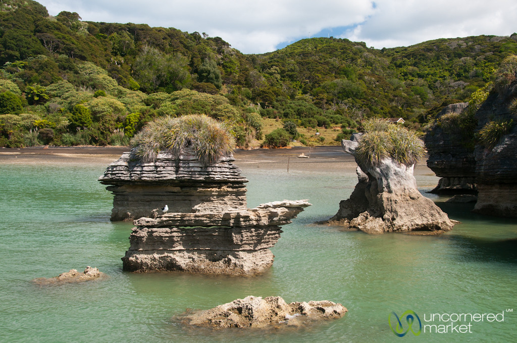 Pancake Rocks Near Raglan - New Zealand
