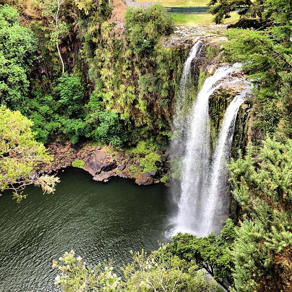 When waterfalls have that special something. Whangarei Falls -- Northland, New Zealand