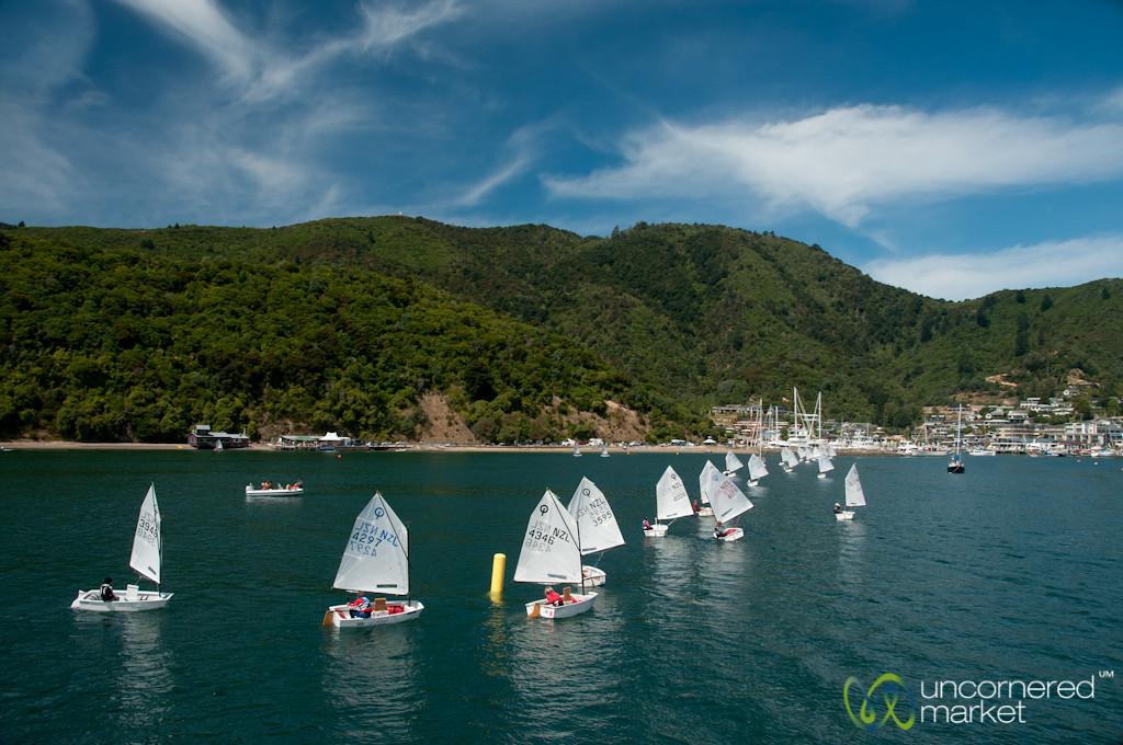 Sailing in Queen Charlotte Sound - Marlborough, New Zealand