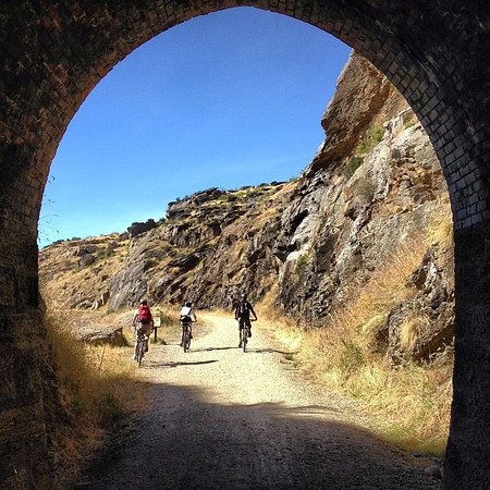 A view out the Poolburn Tunnel. We cycled 38km of the Otago Rail Trail #newzealand