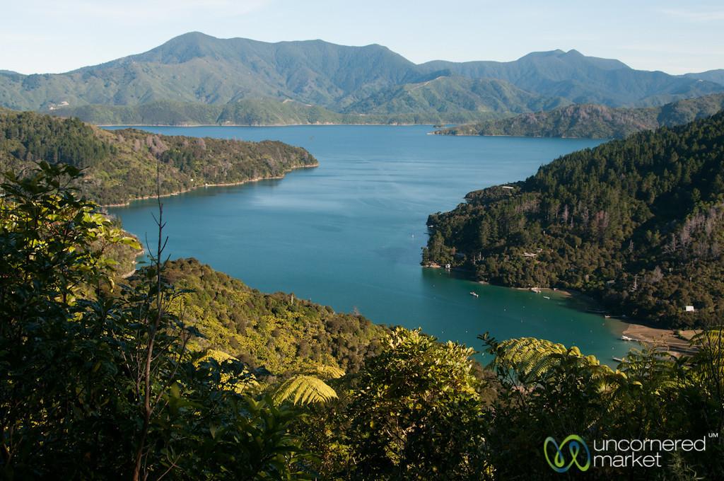 Queen Charlotte Sound Views - New Zealand - New Zealand