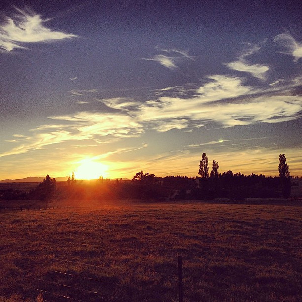 Sunrise on the ranch - Wedderburn, Central Otago #newzealand
