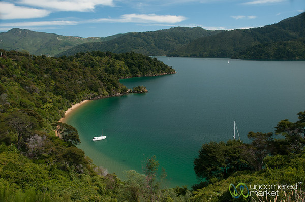 Queen Charlotte Sound - Marlborough, New Zealand