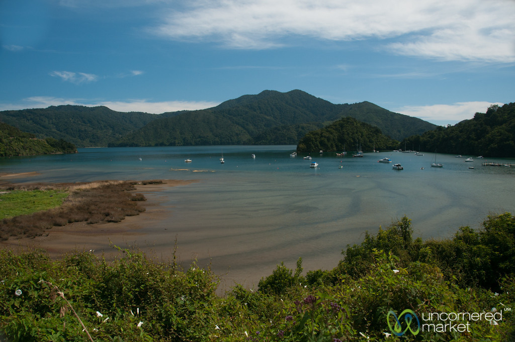 Marlborough County Water Landscapes - New Zealand