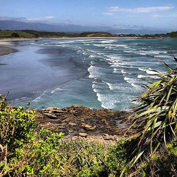 Rugged, wind and weather-beaten. The left coast, South Island, New Zealand