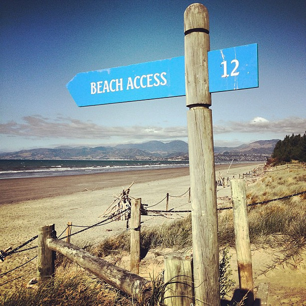 Capturing our state of mind: Rabbit Island beach, today's Thai curry picnic lunch spot #newzealand