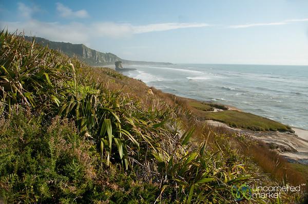 West Coast of New Zealand