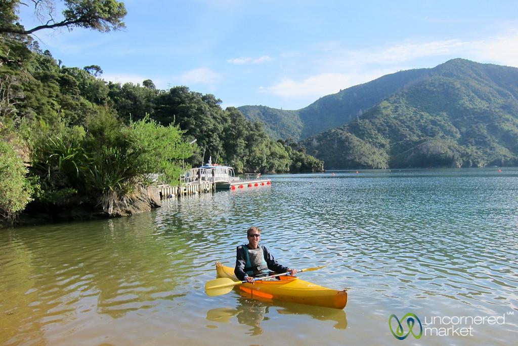 Dan Kayaks on Queen Charlotte Sound near Lochmara Lodge, New Zealand