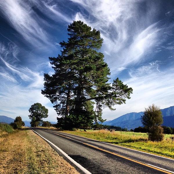 Roadtrip #skyporn all day:  from Picton to Blenheim to Lake Rotoiti to Lewis Pass to Hanmer Springs #newzealand